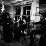 Notas de 4--Navigating Musical Fusion
